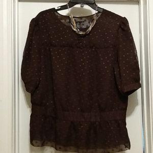 Gorgeous chocolate blouse